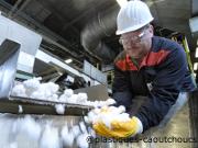 Bioproof: découvrir des matières pour la fabrication du caoutchouc
